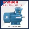 YB2系列防爆电机