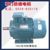 YE2系列防爆电机