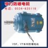 YSF、YT系列防爆电机