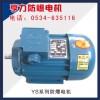 YS系列防爆电机